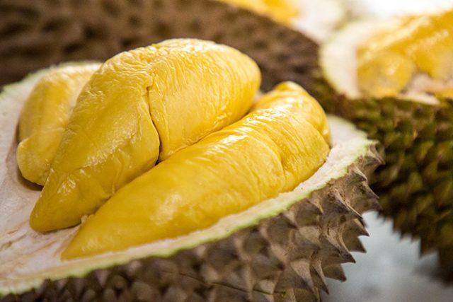 durian Jahang