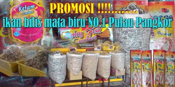 Promosi Ikan Bilis Mata Biru No.1 Jamilah Pangkor